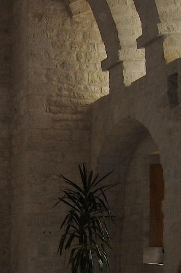 scriptorium-dante