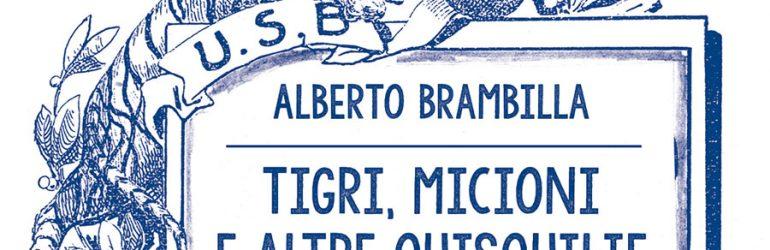 """28.3.2019 – L'intervista su Radio Rai 1 di Alberto Brambilla autore de """"Tigri, micioni e altre quisquilie. Racconti per un centenario"""""""